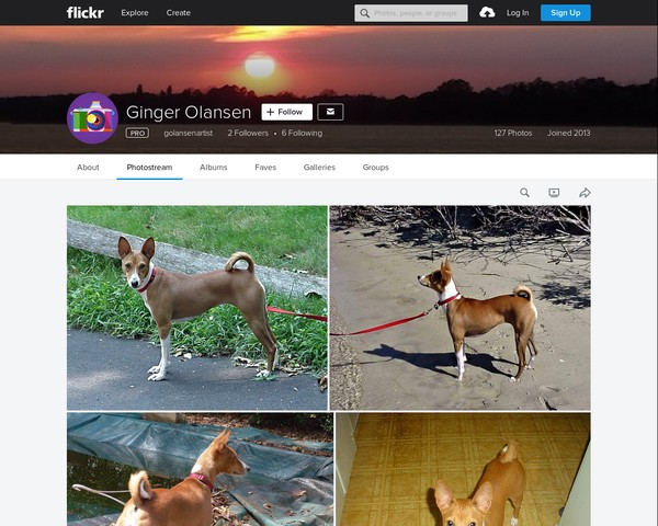 My photographs at Flickr by Ginger Olansen